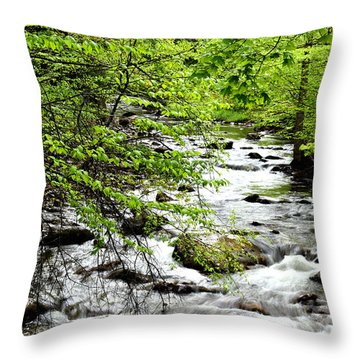 Tea Creek Throw Pillow by Thomas R Fletcher