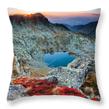 Tear Drops Throw Pillow by Evgeni Dinev