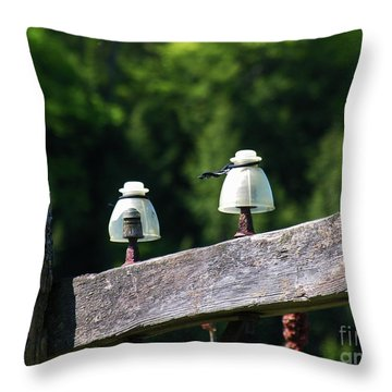 Throw Pillow featuring the photograph Telephone Pole And Insulators by Sherman Perry
