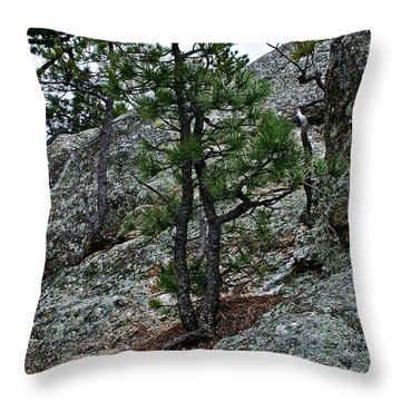 Tenacious Throw Pillow by Susan Herber