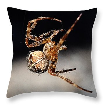 Tending The Web Invisible Throw Pillow by Chriss Pagani