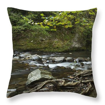 Tennessee Stream Panorama 6045 6 Throw Pillow by Michael Peychich