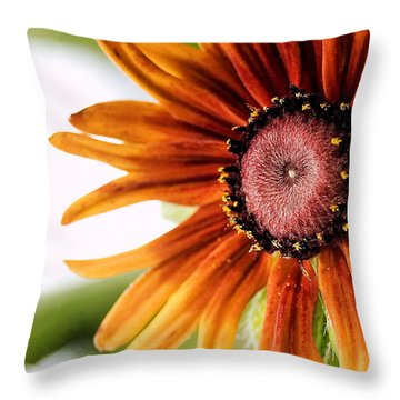 Tequila Sunrise Throw Pillow by Susan Smith