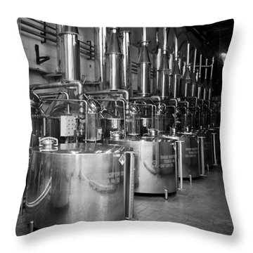Throw Pillow featuring the photograph Tequilera S.s. Distillation Tanks by Lynn Palmer