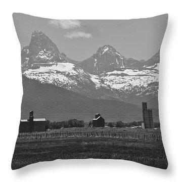 Throw Pillow featuring the photograph Tetonia Grain Elevators by Eric Tressler