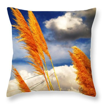 Texas Breeze Throw Pillow