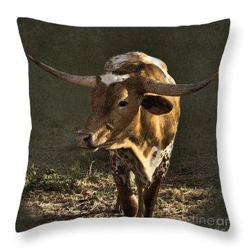 Texas Longhorn # 4 Throw Pillow by Betty LaRue
