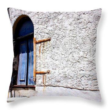 The Back Door Throw Pillow