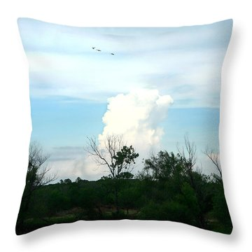 Throw Pillow featuring the photograph The Back Forty by Lon Casler Bixby