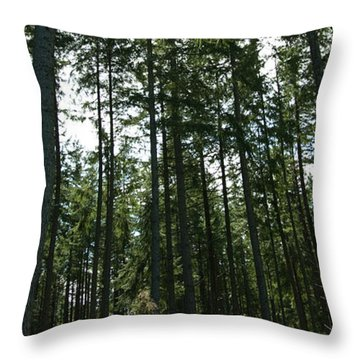 The Back Forty Throw Pillow by Travis Crockart