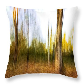 The Backyard Throw Pillow by Scott Pellegrin