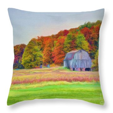 The Barn In Autumn Throw Pillow by Michael Garyet