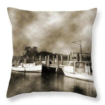 The Bayou Throw Pillow by Barry Jones