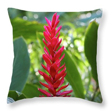 Throw Pillow featuring the photograph The Beauty And The Bokeh by Rachel Cohen
