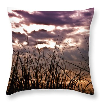 The Brewing Storm Throw Pillow by Bill Cannon