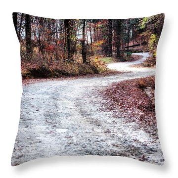 The Broken Road Throw Pillow by Lynne Jenkins