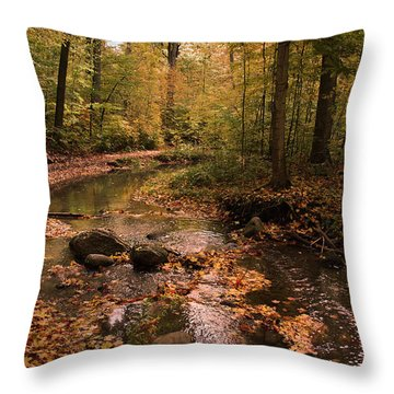 The Brook In The Woods Throw Pillow