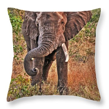 Throw Pillow featuring the photograph The Bull by William Fields