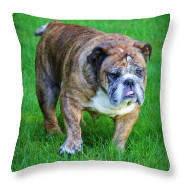 Throw Pillow featuring the photograph The Bulldog Shuffle by Jeanette C Landstrom