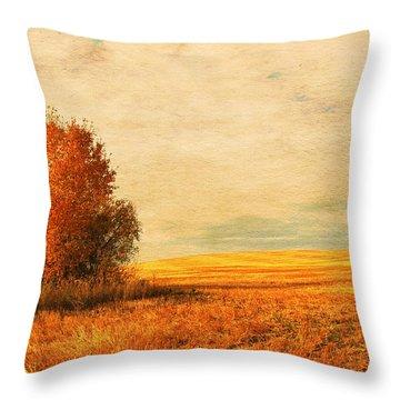 The Careful Breeze  Throw Pillow by Jerry Cordeiro