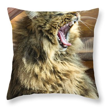 The Cat Who Loves To Sing Throw Pillow