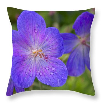 The Color Purple Throw Pillow by Sean Griffin