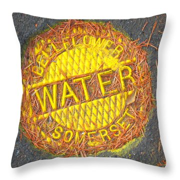The Coming Water Wars Throw Pillow
