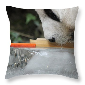The Curiosity Of Orange #1 Throw Pillow by Nola Lee Kelsey