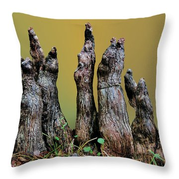 The Cypress Knees Chorus Throw Pillow by Kristin Elmquist
