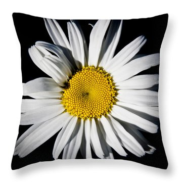 The Daisy Throw Pillow by David Patterson