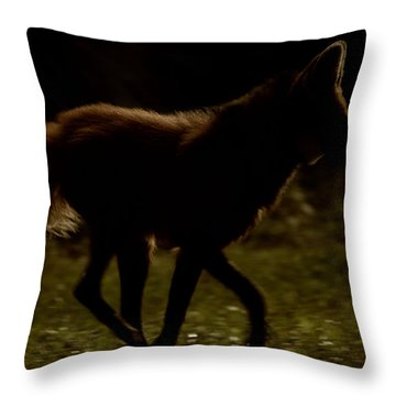 The Dark Side Throw Pillow by Karol Livote