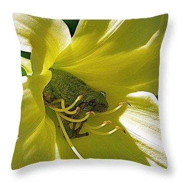 The Day Lily Met Her Prince Throw Pillow by Sue Stefanowicz