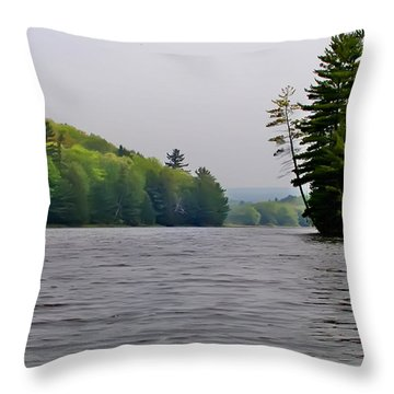 The Delaware River Throw Pillow by Bill Cannon