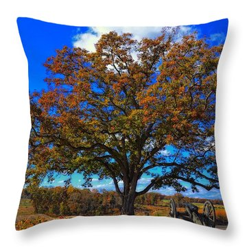 The Devils Den Witness Tree. Throw Pillow by Dave Sandt