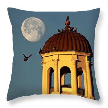 The Dome Throw Pillow by Dan Wells
