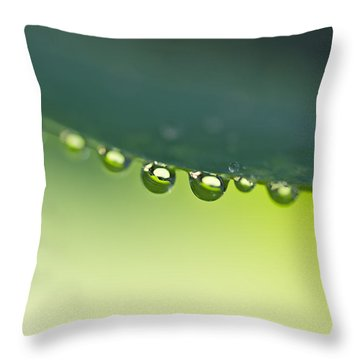 Throw Pillow featuring the photograph The Edge I by Priya Ghose