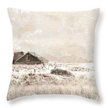 The Effects Of Time Throw Pillow by Michelle Wiarda