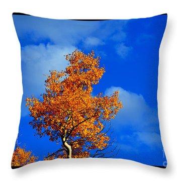 The Essential Aspen 2012 Throw Pillow by Susanne Still