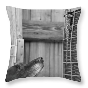 The Exact Moment Throw Pillow