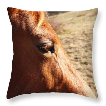 The Eye Of The Horse Throw Pillow by Robert Margetts