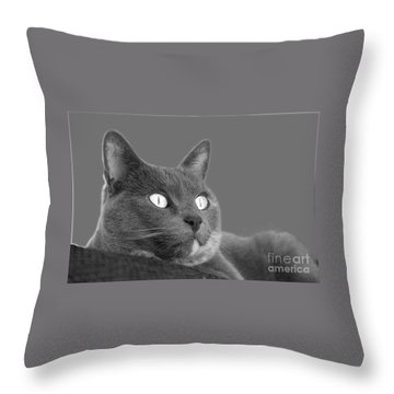 The Eyes Have It Throw Pillow by Nareeta Martin