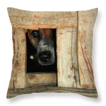 The Face Of Hoarding Throw Pillow by Nola Lee Kelsey