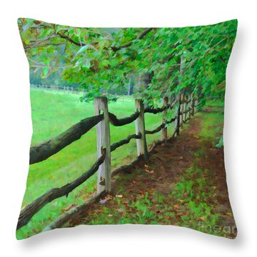 The Fence Path Throw Pillow