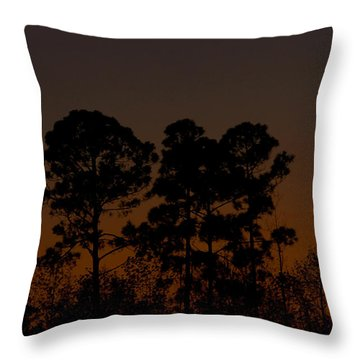 Throw Pillow featuring the photograph The Fingernail Moon by Dan Wells