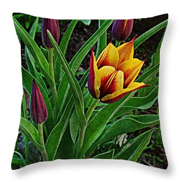 The First One Out Throw Pillow by Chris Berry