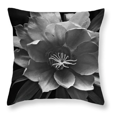 The Flower Of One Night Throw Pillow by Tom Bell