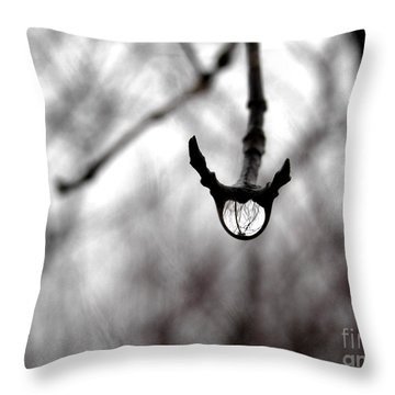 The Foretelling - Raindrop Reflection Throw Pillow