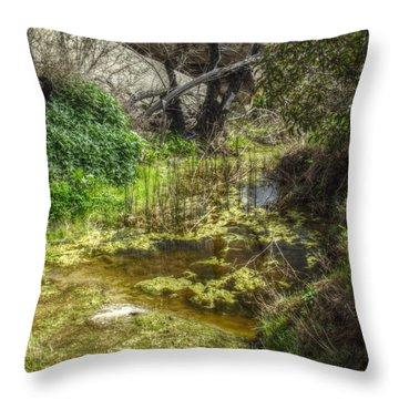 The Frog Pond Throw Pillow by Cindy Nunn