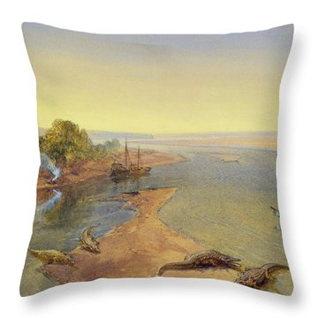 The Ganges Throw Pillow by William Crimea Simpson
