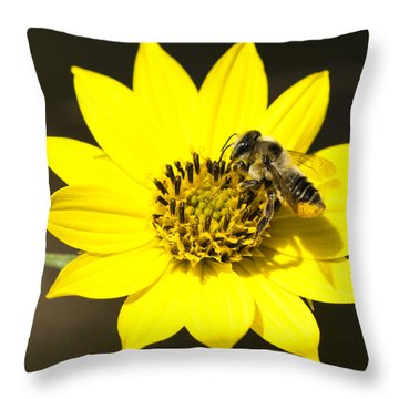 The Gatherer Throw Pillow by Carrie Cranwill